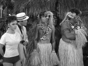 Dawn Wells (Mary Ann) Gilligan's Island - In bikini bottoms bound and gagged to a tree! (x5)