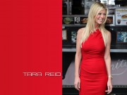 Tara Reid : Sexy Wallpapers x 3