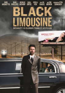 Download Black Limousine (2010) DVDRip 400MB Ganool